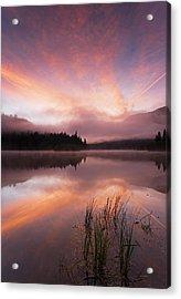 Heavenly Skies Acrylic Print by Mike  Dawson