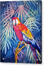 Hello There Acrylic Print by Martha Ayotte