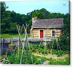 Herb And Vegetable Garden Acrylic Print by Penny Neimiller