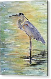 Heron At The Lagoon Acrylic Print by Patricia Pushaw