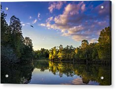 Hidden Light Acrylic Print by Marvin Spates