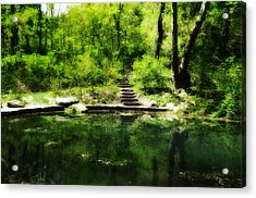 Hidden Pond At Schuylkill Valley Nature Center Acrylic Print by Bill Cannon