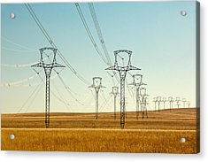 High Voltage Power Lines Acrylic Print by Todd Klassy
