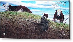 Hillside Retreat Acrylic Print by Denny Bond