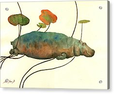 Hippo Swimming With Water Lilies Acrylic Print by Juan  Bosco