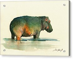 Hippo Watercolor Painting Acrylic Print by Juan  Bosco
