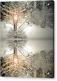 Hold This Light In Your Heart Acrylic Print by Tara Turner