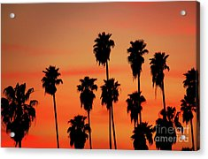 Hollywood Sunset Acrylic Print by Mariola Bitner