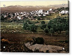 Holy Land - Jenin Acrylic Print by Munir Alawi