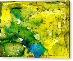Homeward Acrylic Print by Pearse Gilmore