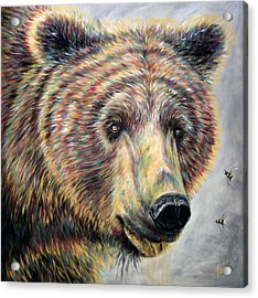 Honey Bear Acrylic Print by Teshia Art
