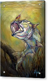 Hooked Acrylic Print by Tom Dauria
