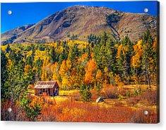 Hope Valley California Rustic Barn Acrylic Print by Scott McGuire