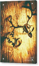 Horned Animal Rings Acrylic Print by Jorgo Photography - Wall Art Gallery
