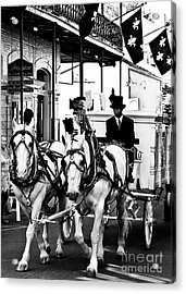 Horse Drawn Funeral Carriage Acrylic Print by Kathleen K Parker