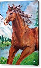Horse Painting Acrylic Print by Bekim Axhami