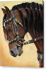 Horse Portrait  Acrylic Print by Svetlana Ledneva-Schukina
