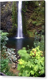Horsetail Falls Basin Acrylic Print by Marty Koch