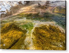 Hot Springs Pool Acrylic Print by Sue Smith