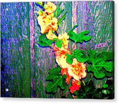 Hot Summer Afternoon Acrylic Print by  Connie Valasco