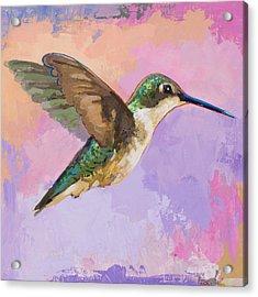 Hummingbird #2 Acrylic Print by David Palmer