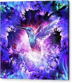 Hummingbird Love Acrylic Print by Cameron Gray