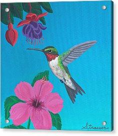 Hummingbird Heaven Acrylic Print by Frank Strasser