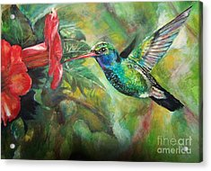 Hummingbird Acrylic Print by Laneea Tolley