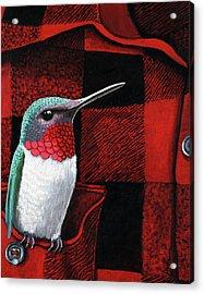 Hummingbird Memories Acrylic Print by Linda Apple