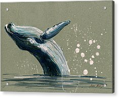 Humpback Whale Swimming Acrylic Print by Juan  Bosco