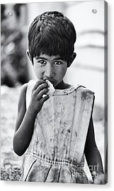 Hungry Acrylic Print by Tim Gainey
