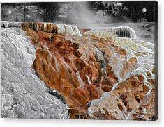 Hymen Terrace Mammoth Hot Springs Yellowstone Park Wy Acrylic Print by Christine Till