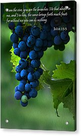 I Am The Vine Acrylic Print by Ann Bridges