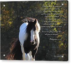 I Can Do All Things Acrylic Print by Terry Kirkland Cook