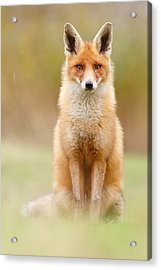 I Can't Stand The Rain Acrylic Print by Roeselien Raimond