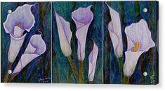 I Love Callas Acrylic Print by Madalena Lobao-Tello