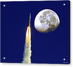 I Need My Space Acrylic Print by Roger Wedegis