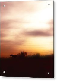 I Once Had A Dream ... Acrylic Print by ELA-EquusArt