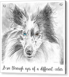 I See Through Eyes Of A Different Color Acrylic Print by Amy Kirkpatrick
