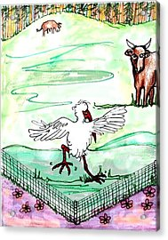 Ibis Hopping Acrylic Print by Carol Allen Anfinsen