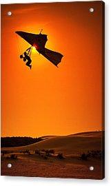 Icarus Acrylic Print by Neil Shapiro