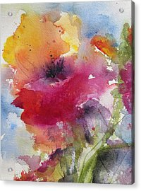 Iceland Poppy Acrylic Print by Anne Duke