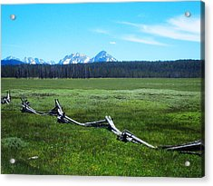 Idaho Countryside Acrylic Print by Susan Kinney