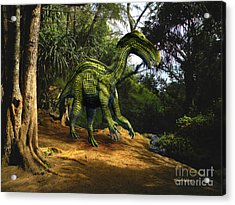 Iguanodon In The Jungle Acrylic Print by Frank Wilson