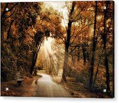 Illumination Acrylic Print by Jessica Jenney