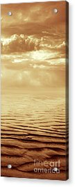Illusion Never Changed Into Something Real Acrylic Print by Dana DiPasquale
