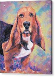 I'm All Ears Ears Acrylic Print by Billie Colson