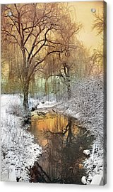 In The Calm Of Winter Acrylic Print by Tara Turner