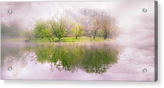 In The Clouds Acrylic Print by Debra and Dave Vanderlaan