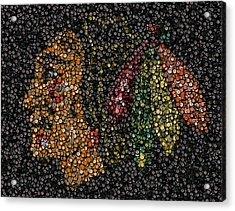 Indian Hockey Puck Mosaic Acrylic Print by Paul Van Scott
